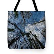 Loamhole Dingle Treetops Tote Bag