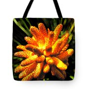 Loblolly All A Glow Tote Bag