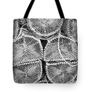 Lobster Creels Tote Bag