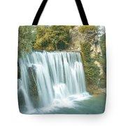 Locally Tote Bag
