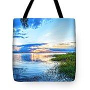 Lochloosa Lake Tote Bag