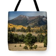 Lockett Meadow Autumn Tote Bag