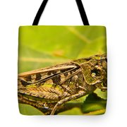 Locust In Green Tote Bag