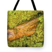 Log In Algae Tote Bag by Tom Potter