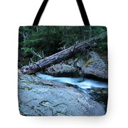 Log Over Deep Creek Tote Bag