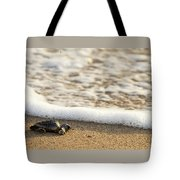 Loggerhead Turtle Hatchling 3 Delray Beach Florida Tote Bag