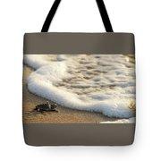 Loggerhead Turtle Hatchling 4 Delray Beach Florida Tote Bag