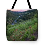 Lolo Creek Spring Tote Bag