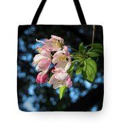 Lone Cherry Blossoms Tote Bag