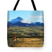 Lone Cone Mountain Tote Bag