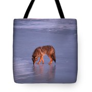 Lone Coyote On The Shore Of Lake Superior Tote Bag