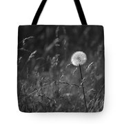 Lone Dandelion Black And White Tote Bag