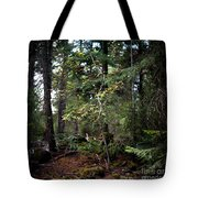 Lone Dogwood Tote Bag