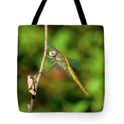 Lone Dragonfly Tote Bag