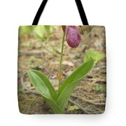 Lone Lady Slipper Tote Bag