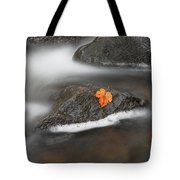 Lone Leaf Tote Bag