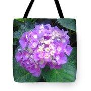 Lone Lilac Tote Bag