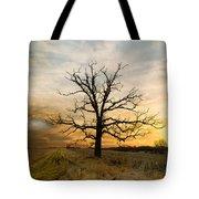 Lone Oak On The Marsh Tote Bag