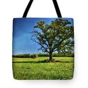 Lone Oak Tree In Wisconsin Field Tote Bag