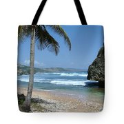 Lone Palm On Barbados Coast Tote Bag