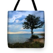 Lone Tree And Beach Flowers Tote Bag