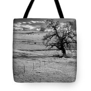 Lone Tree And Cows 2 Tote Bag