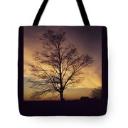 Lone Tree At Sunrise Tote Bag