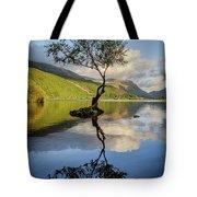 Lone Tree, Llyn Padarn Tote Bag