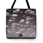 Lone Tree Morning In B And W Tote Bag