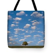 Lone Tree Morning Tote Bag