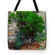 Lone Tree On A Cliff Tote Bag