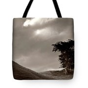 Lone Tree On A New Zealand Hillside Tote Bag