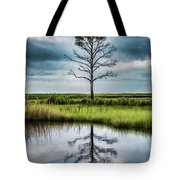 Lone Tree Reflected Tote Bag