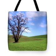 Lone Tree - Rolling Hills - Summer Sky Tote Bag