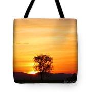 Lone Tree Sunset Tote Bag