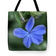 Lone Wildflower Tote Bag