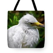 Lonely Bird Tote Bag
