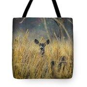 Lonely Deer In The Field Tote Bag