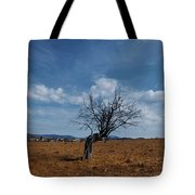 Lonely Dry Tree In A Field Tote Bag