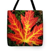 Lonely Leaf ... Tote Bag