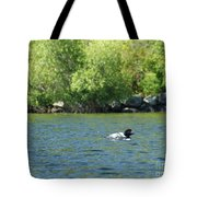 Lonely Loon Taking The Red Eye Tote Bag