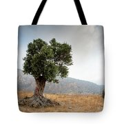 Lonely Olive Tree And Stormy Cloudy Sky Tote Bag