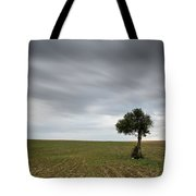 Lonely Olive Tree With Moving Clouds Tote Bag