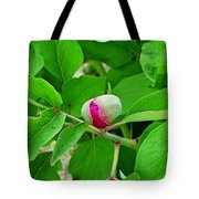 Lonely Peony  Tote Bag