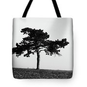 Lonely Pine Tote Bag