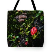 Lonely Red Leaf Tote Bag