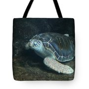 Lonely Sea Turtle Tote Bag