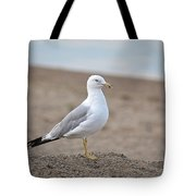 Lonely Seagull Tote Bag
