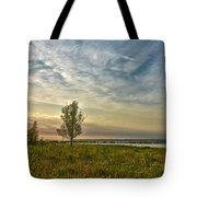 Lonely Tree In Dintelse Gorzen Tote Bag