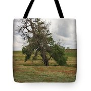 Lonely Tree In West Texas Tote Bag